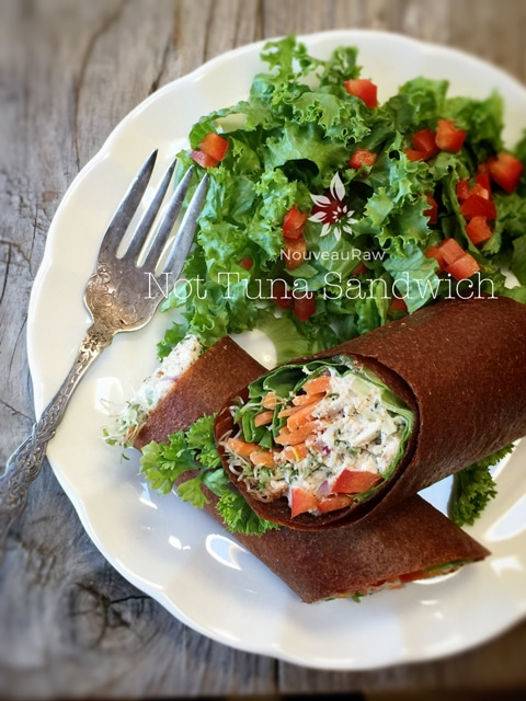 raw vegan rolling the Not Tuna - but close! - Sandwich served on a white plate with a salad