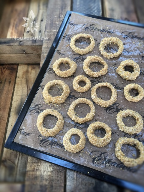 placing the raw vegan gluten-free Spicy Onion Rings in the dehydrator