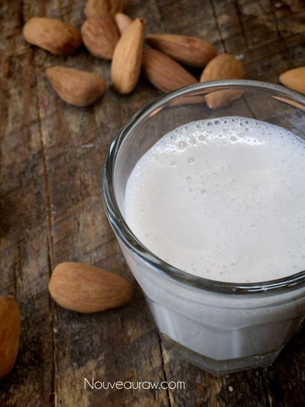 Tasty Raw Gluten-Free Vegan Homemade Nut Milk with nuts