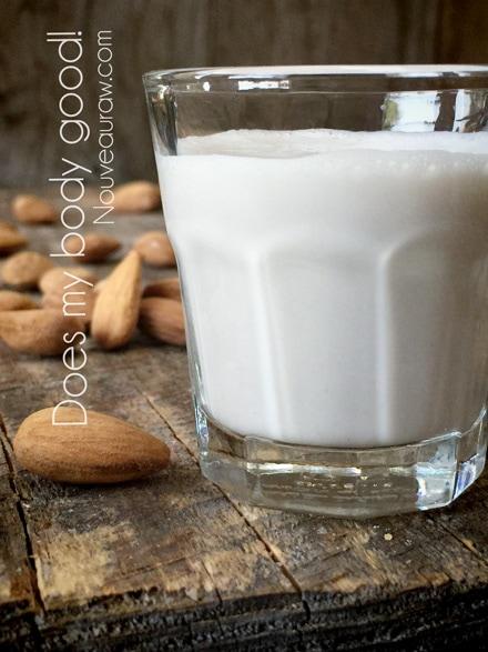 Tasty Raw Gluten-Free Vegan Homemade Nut Milk with nuts