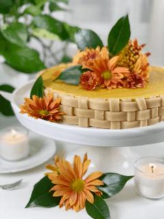 raw vegan gluten- free cashew-free pumpkin spice pie