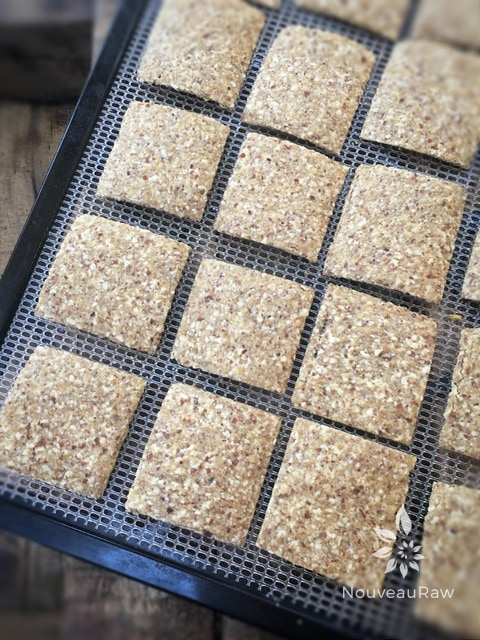 raw gluten free Almond Thin Crackers displayed on a dehydrator sheet
