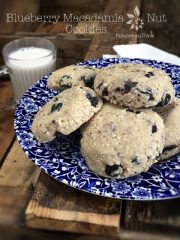 Blueberry Macadamia Nut Cookies (raw, vegan, gluten-free)