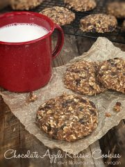 Chocolate Apple Raisin Cookies (raw, vegan, gluten-free)