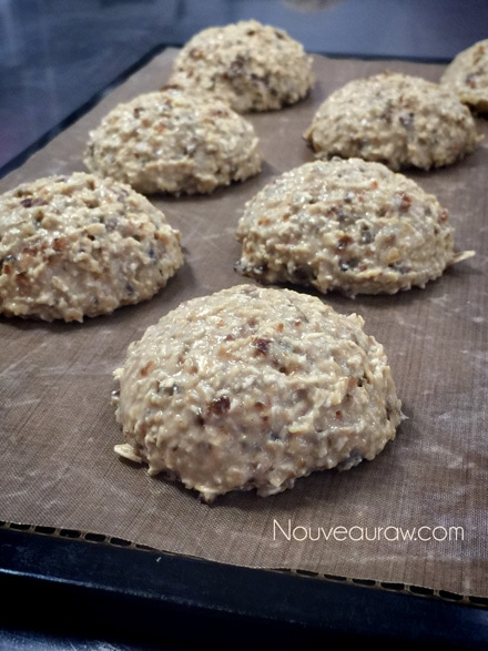 raw vegan Breakfast Nook Cookies on a dehydrator tray so they can be dehydrated