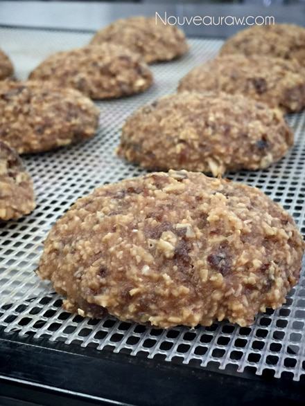 raw vegan Breakfast Nook Cookies on a dehydrator tray