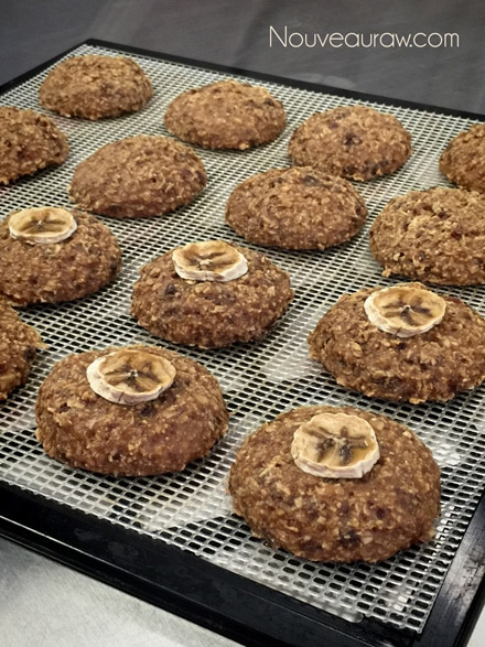 raw vegan Breakfast Nook Cookies on a dehydrator tray ready to be devoured