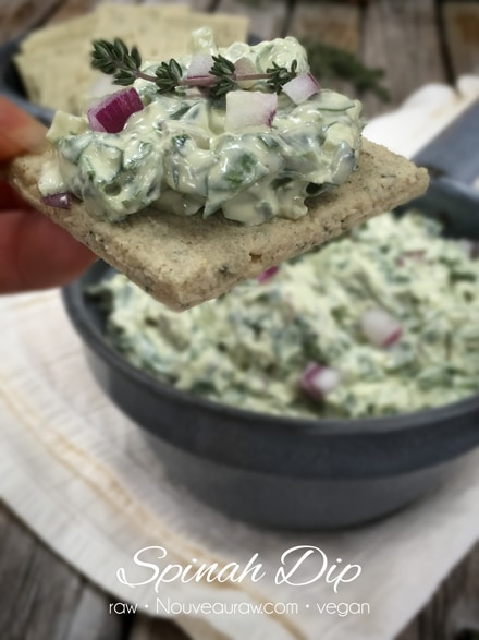 raw, vegan Spinach Dip served on a raw cracker