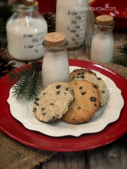 chocolate-chip-cookies1