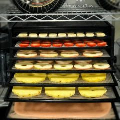How to Use a Dehydrator