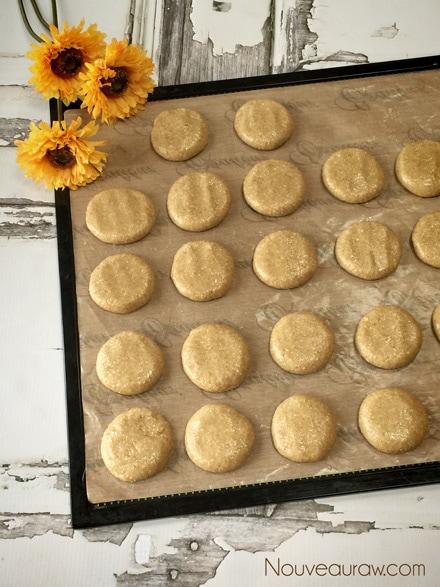 Raw-Almond-Hooter-Cookies2