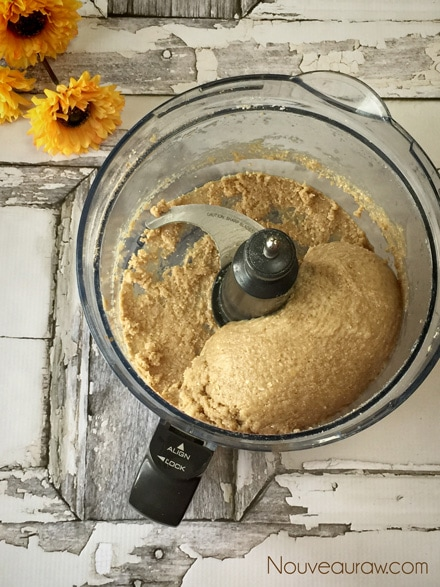 Raw-Almond-Hooter-Cookies7