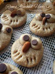 Almond Hooter Cookies (raw, vegan, gluten-free)