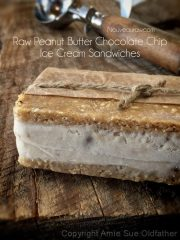 Peanut Butter Chocolate Chip Ice Cream Sandwiches (raw, vegan, gluten-free)