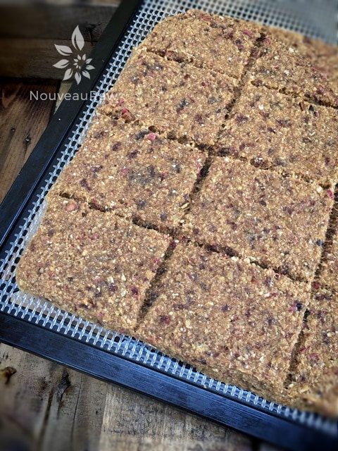 Raw Apple Oat Bread on dehydrator after drying