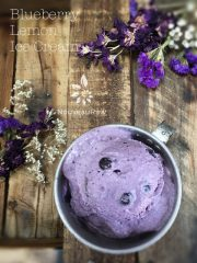 Blueberry Lemon Ice Cream (raw, vegan, gluten-free)