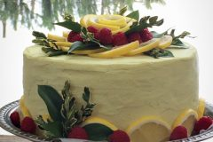 Raw-Coconut-Raspberry-Lemon-Cake1