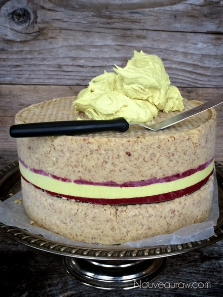 Raw-Coconut-Raspberry-Lemon-Cake127