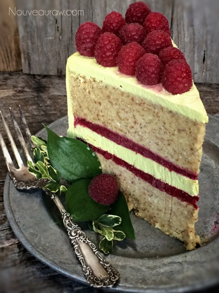 Raw-Coconut-Raspberry-Lemon-Cake223