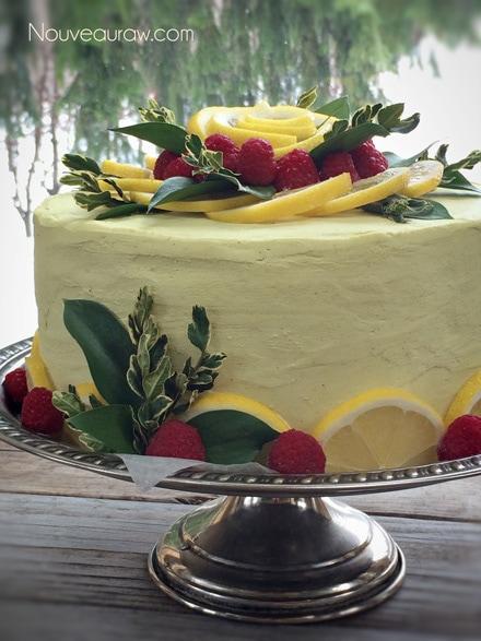 Raw Coconut Raspberry Lemon Cake from Nouveau Raw Recipes
