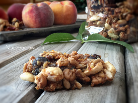 a close up of raw gluten-free Ginger Peach Granola