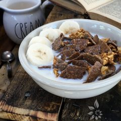 Apple-Banana-Craisin-Bran-Flakes--featured