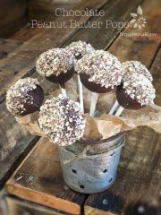 Chocolate Peanut Butter Pops (raw, gluten-free)