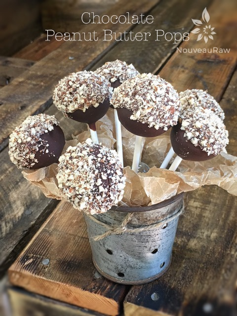 Chocolate-Peanut-Butter-Pops-featured
