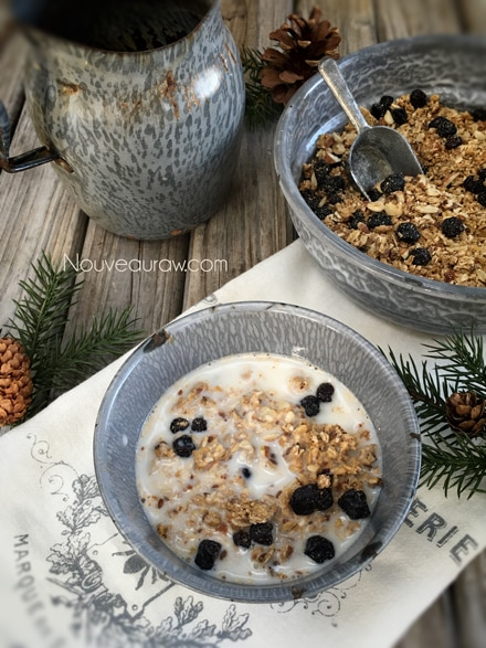 Blueberry-Coconut-Muesli2