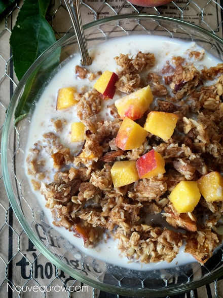Raw-Pecan-Peach-Granola
