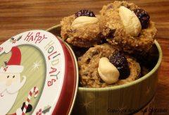 Pumpkin Banana Cranberry Chocolate Chip Cookies (raw, vegan, gluten-free)
