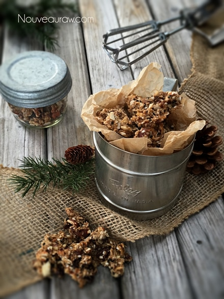Abso-FIG-ing-lutely-Granola4