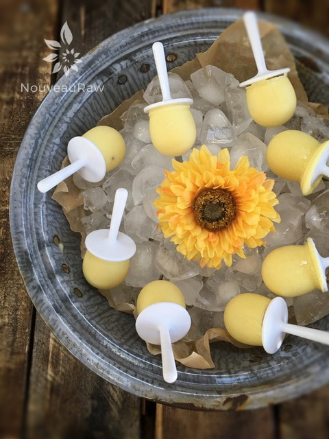 Pineapple-Coconut-Tropical-Dixie-Pops-4