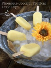 Pineapple Coconut Tropical Dixie Pops (raw, vegan, gluten-free, nut-free)
