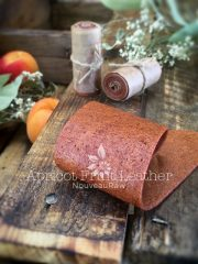 Apricot Fruit Leather (raw, vegan, gluten-free, nut-free)