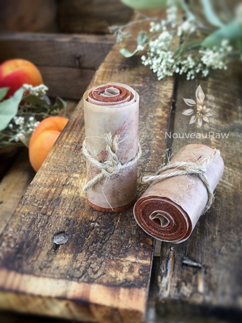 apricot fruit leather rolled and tied with twine