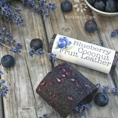 Blueberry-Coconut-Fruit-Leather--featured