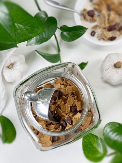 raw vegan gluten-free Maple Pumpkin Spice Crunch Cereal