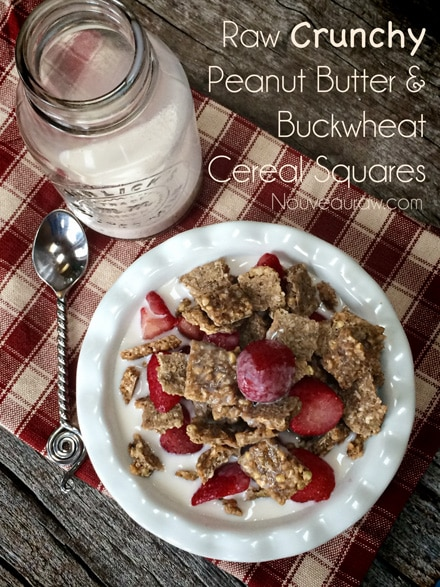 Raw Crunchy Peanut Butter and Buckwheat Cereal Squares with Fresh strawberries
