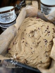 Pecan Cranberry Pumpkin Ice Cream (raw, gluten-free)