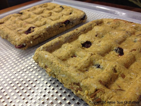 Yummy Raw Waffles are ready with Rival Waffle Maker