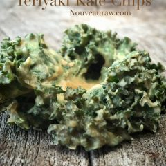 Raw-Teriyaki-Kale-Chips1