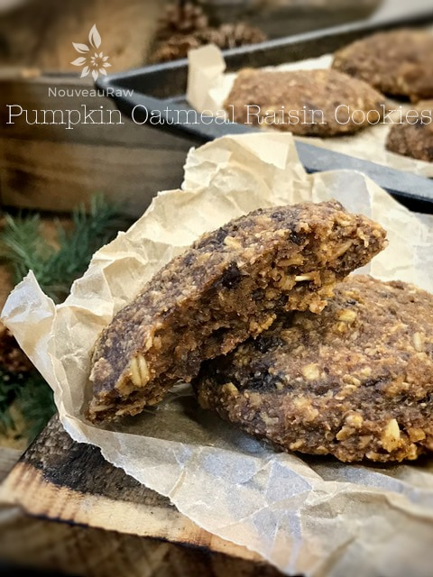 Raw, Vegan, Gluten Free Pumpkin Oatmeal Raisin Cookies