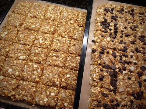Raw Gluten-Free Almond Banana Brittle Cookie Squares with two variation on Dehydrator Tray