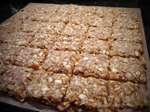 Raw Gluten-Free Almond Banana Brittle Cookie Squares Dehydrator Tray