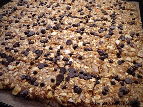 Raw Gluten-Free Almond Banana Brittle Cookie Squares with chocolota Dehydrator Tray