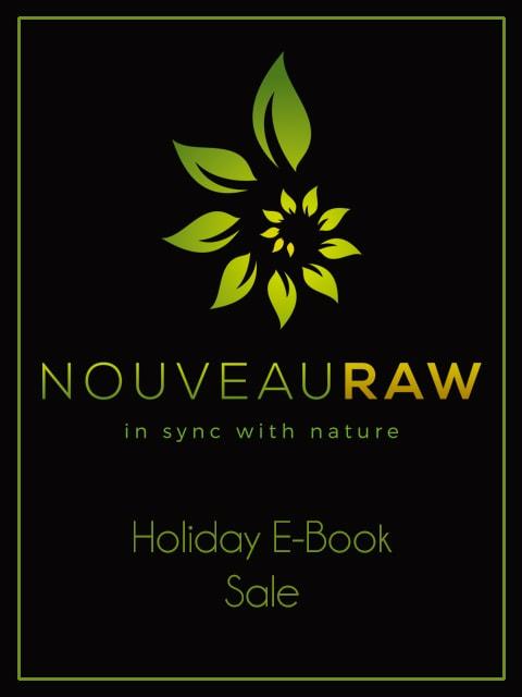 holiday-e-book-sale-1