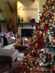 Happy Holidays!   A Special Thank You & an eBook Sale!