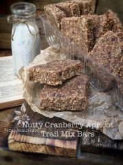 Nutty Cranberry Apricot Trail Mix Bars (raw, vegan, gluten-free)