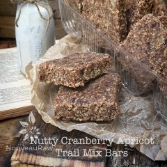 Nutty-Cranberry-Apricot-Trail-Mix-Bars-featured